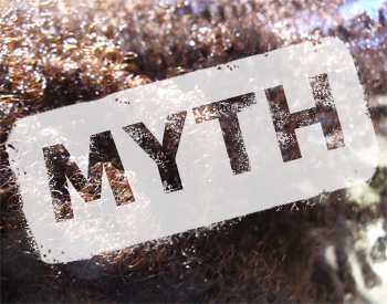 5 Natural Hair Myths That Need Busting
