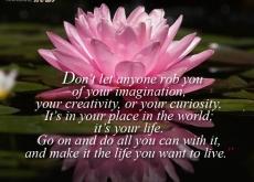 Mae Jemison on Imagination