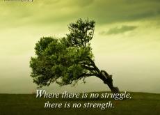 Oprah on Strength and Struggle